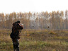 Охота на тетерева с легавой