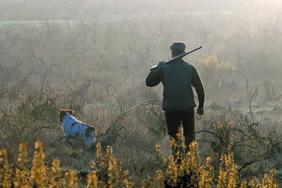 Принципы безопасного поведения на охоте отражены в главе 12 Правил ведения охотничьего хозяйства и охоты. Напоминаем основные из них....