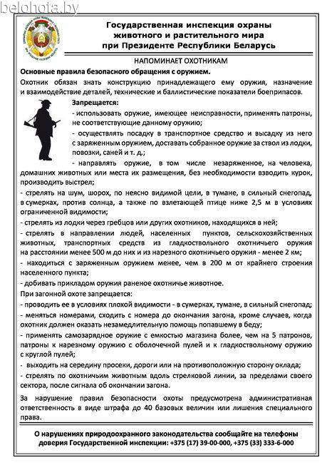 Новости 21 канала мурманск