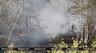 В Орше и Гомельской области введен запрет на посещение лесов