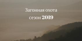 С 1 октября по 31 декабря 2019 года открывается охота на лося, кабана, косулю, оленей – благородного и пятнистого, лань, муфлона можно будет загоном и...