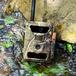 Фотоловушка SiFar 3.5CGR / 3.5CGW