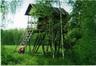 Лесоохотничье хозяйство ГЛХУ «Бобруйский лесхоз»